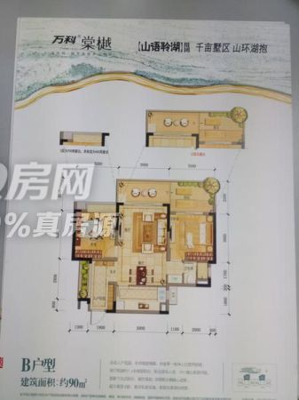 万科棠樾 精装洋房 看仙女湖,大屏障森林公园
